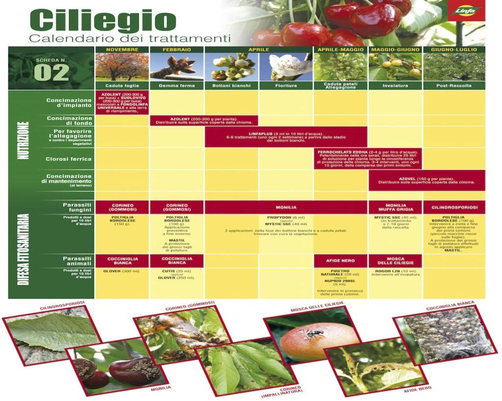 Trattamenti Ciliegio Calendario.Trattamenti Ciliegio Calendario Calendario 2020