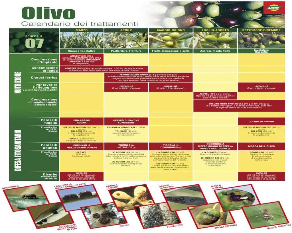 Trattamenti Ciliegio Calendario.Calendario Trattamenti Olivo Vite E Piante Da Frutto